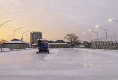 Outdoor skating rink being cleaned for early morning sunrise ska Royalty Free Stock Images