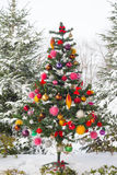Outdoor snow covered Christmas Tree Stock Photo