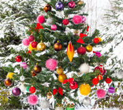Outdoor snow covered Christmas Tree Royalty Free Stock Photo