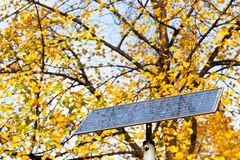Outdoor solar battery panel and tree Royalty Free Stock Photos