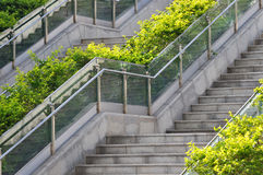 Outdoor stair in pattern. Outdoor stair in devious and layer with green plant, shown as composition by shape and line or block with rhythm, and architecture Royalty Free Stock Image