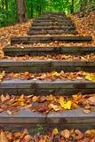 outdoor steps Στοκ φωτογραφία με δικαίωμα ελεύθερης χρήσης