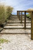 Outdoor steps with railing in parklike setting. Stairway made from timbers and shell with native grasses near beach stock photos