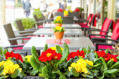 Outdoor street cafe Stock Images