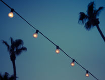 Outdoor String Garland Light Bulbs in Evening. String of Vintage Lightbulbs in Tropical Garden Stock Photos
