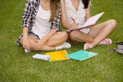 Outdoor study Stock Photo