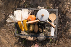 Outdoor summer BBQ or picnic. Good royalty free stock photography