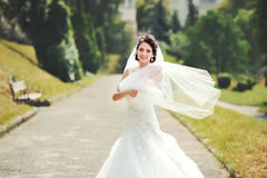Outdoor summer portrait of young brunette bride Royalty Free Stock Photos
