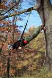 Outdoor suspension training in forest. Caucasian man at tree stock photos