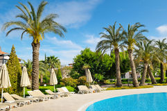 Outdoor swimming pool and palm trees Royalty Free Stock Images