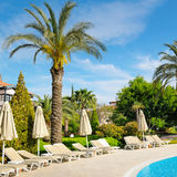 Outdoor swimming pool and  palm trees. Outdoor swimming pool and beautiful palm trees Stock Image