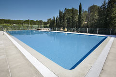 Outdoor swimming pool surrounded by trees Royalty Free Stock Images