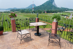 Outdoor table and chair garden furniture with nature view Stock Images