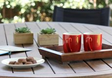 Outdoor table setting with cookies, two red coffee cups, book, flowers. Outdoor table setting with cookies, two red coffee mugs  book, flowers with soft focus Stock Photography