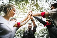 Outdoor team orienteering activity together Stock Photography