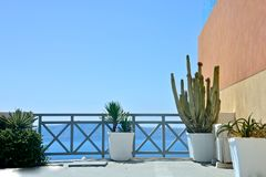 Outdoor terrace seafront with colored wall and plants. Close up of outdoor terrace seafront with colored wall and plants stock photography