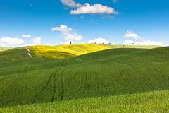 Outdoor Tuscan hills landscape Royalty Free Stock Photography