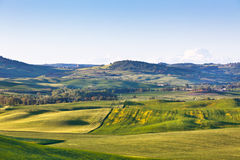 Outdoor Tuscan Val d Orcia green and yellow hills Stock Photo