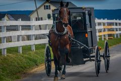 Outdoor view of Amish horse and carriage travels on a road in Lancaster County. Pennsylvania Stock Image