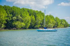 Outdoor view of beautiful yatch close to a mangrove in Krabi Province, Andaman Sea, South of Thailand.  Royalty Free Stock Images