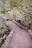 Outdoor view of brick pathway leading through the forest to the ocean, on Galapagos Island Santa Cruz stock photography