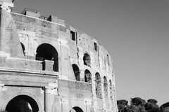Colosseum in Rome. Outdoor view of The Colosseum or Coliseum, also known as the Flavian Amphitheatre. Black and white image Royalty Free Stock Image