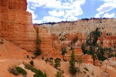 Bryce Canyon National Park is a United States National Park in Utah`s Canyon Country. stock photography