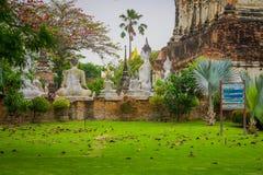 Outdoor view of many white ancient Buddha statues at WAT YAI CHAI MONGKOL, The Historic City of Ayutthaya, Thailand.  Stock Photo