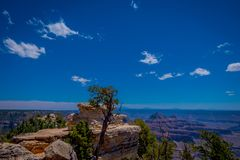 Outdoor view of rock in the border, cliffs above Bright Angel canyon, major tributary of the Grand Canyon, Arizona, view. From the north rim in a gorgeous sunny stock images
