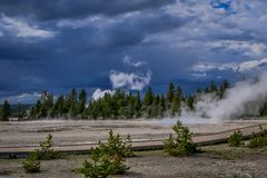 Outdoor view of some trees in the horizont with small geysers, hot springs, and vents of Norris Geyser Basin. Yellowstone National Park, Wyoming, USA Stock Photography