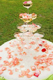 Outdoor wedding reception overview Royalty Free Stock Images