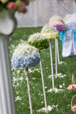 Outdoor wedding Scene Stock Image