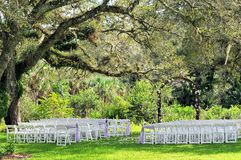 Outdoor wedding venue under old tree Stock Photography