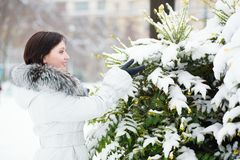 Outdoor winter portrait of a beautiful girl Stock Photography
