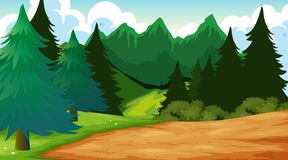 Outdoor wood background scene. Illustration vector illustration