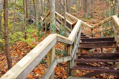 Free Outdoor Wooden Stairs Leading Upwards In Blue Ridge Mountains Royalty Free Stock Images - 103085659