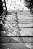 Outdoor wooden stairway Royalty Free Stock Photography