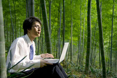 Outdoor Working in the Forest Royalty Free Stock Photo