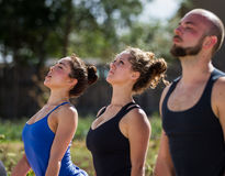 Outdoor yoga. Group of young people practicing in an outdoor yoga class Royalty Free Stock Image