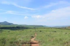Outdoors ścieżka przez zieleni pola trawa w afrykańskiej naturze, królewski natal, południowy Africa, krajobraz Fotografia Stock