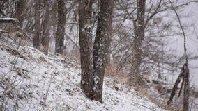 Outdoors в Harrison County WV в зиме пока идущ снег акции видеоматериалы