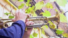 Outdoors музыканта сток-видео