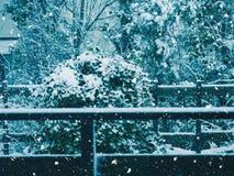 Outdoors падения снега в сельской местности стоковые изображения rf