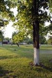сновидения outdoors ослабляя детенышей женщины лета Стоковые Фото