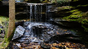 outdoors fotografia de stock royalty free