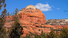 Arizona Mountain Scenery with Tree Stock Image