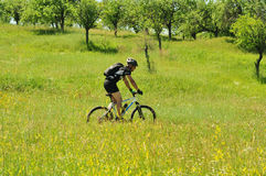 Outdoors bicyclist Royalty Free Stock Images