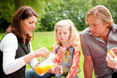 Outdoors family picnic Stock Photos