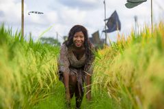 Outdoors fresh portrait of young beautiful and happy black afro American woman in cool dress having fun at tropical rice field. Enjoying exotic holidays trip in stock image