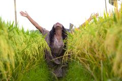 Outdoors fresh portrait of young beautiful and happy black afro American woman in cool dress having fun at tropical rice field. Enjoying exotic holidays trip in stock images